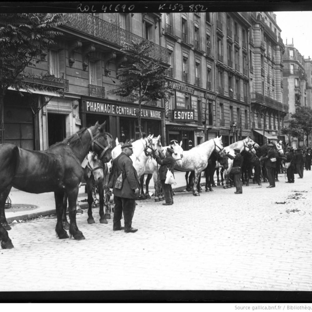 4-8-14,la mobilisation, les chevaux réquisitionnés : [photographie de presse] / [Agence Rol]