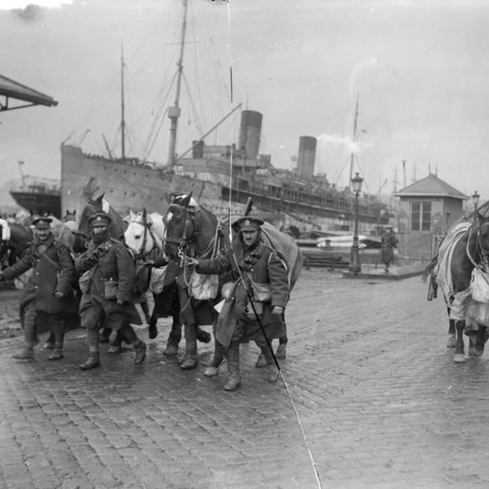 [Soldats du génie britannique emmenant leurs chevaux après leur débarquement]